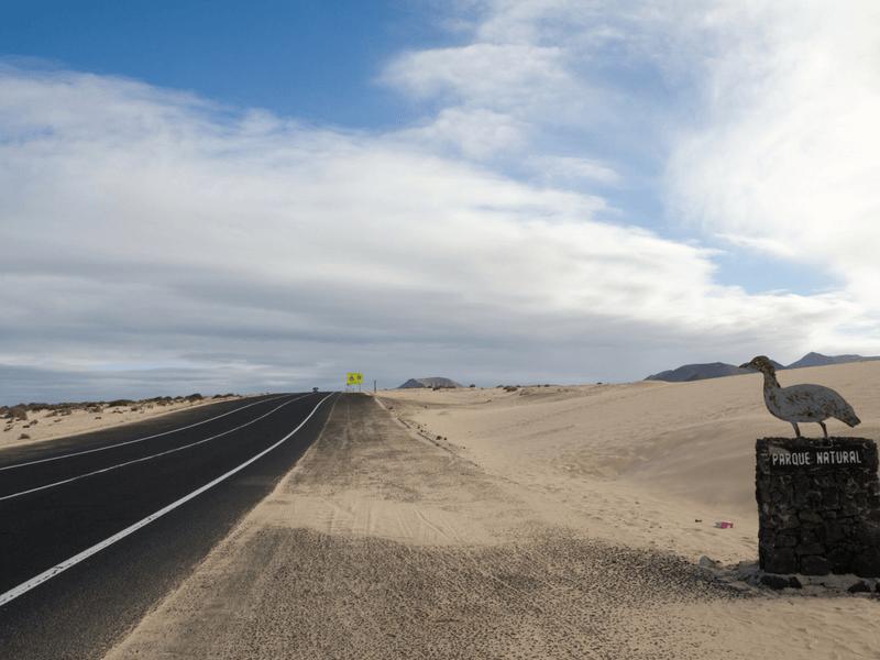 dunes national park in Fuerteventura canary islands