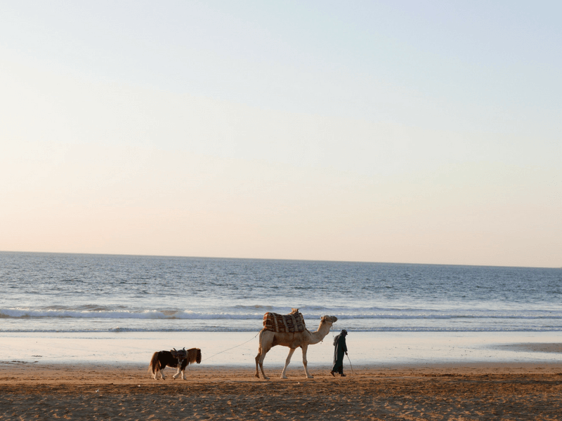 morocco surfing spot